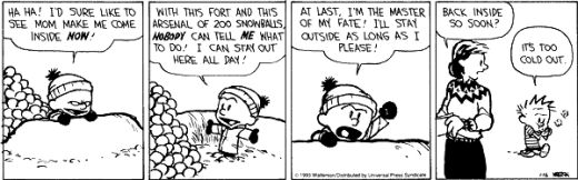 Some random Calvin and Hobbes strip.
