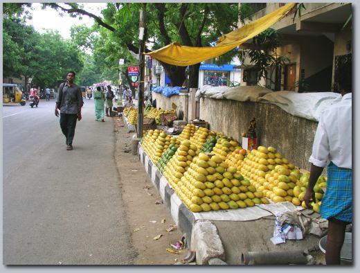 Mango footpath.