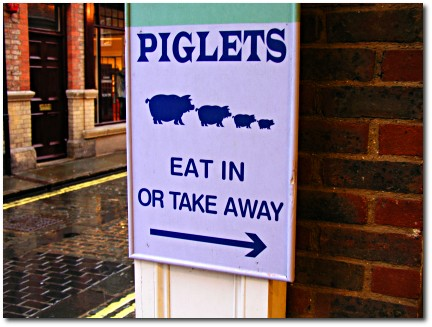 Piglet food