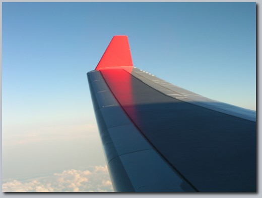 The plane's wing